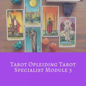 Tarot Opleiding tot Tarot Professional Module 3